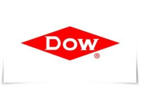 Photo of Dow nombra a Paula Sans Quiros como Directora Comercial de Packaging & Specialty Plastics en México.