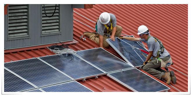 Photo of Pigmentos naturales que mejoran la energía de las placa solares