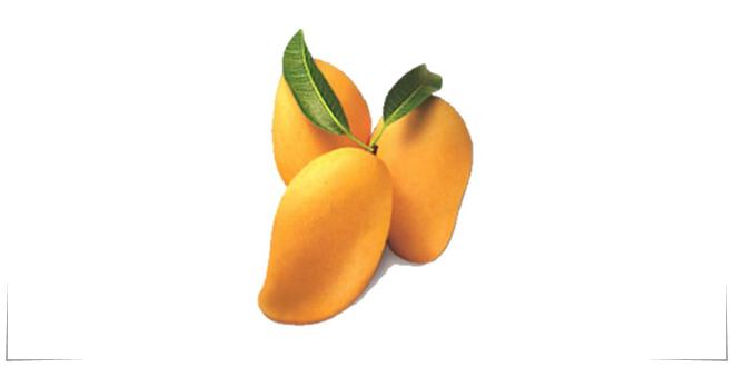 Photo of Crean biopelículas para recubrimiento natural de mango
