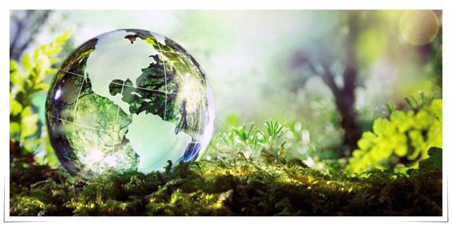 Photo of EndOfPlastics aprovechará 200, 000 toneladas de residuos plásticos