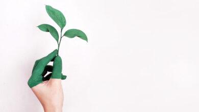Photo of 9 de cada 10 consumidores prefieren los productos con un perfil medioambiental