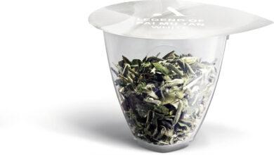 Crean la primera cápsula de té hecha con Polipropileno Circular