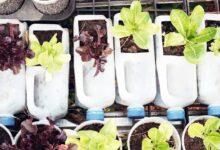 Upcycling ¿qué es y cómo puede darle valor a los desechos?