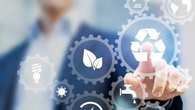 Empresas sustentables: ¿qué son y cómo están cambiando la sostenibilidad?