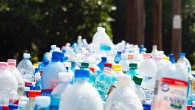 Reutilización de envases de plásticos reciclados creció 22%: Pnuma