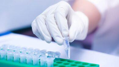 Biomateriales termoplásticos pueden reparar tejidos blandos: estudio