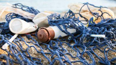 Natura: 6 razones para elegir envases reciclados, recargables y reutilizables