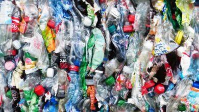 IBM creará una plataforma cloud para el reciclaje de plásticos