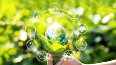 5 formas en las que los plásticos apoyan la sustentabilidad y la economía circular