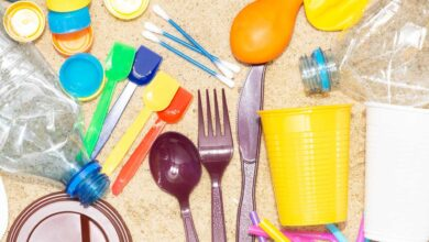 Inicia la prohibición de plásticos en CDMX: comerciantes piden prórroga