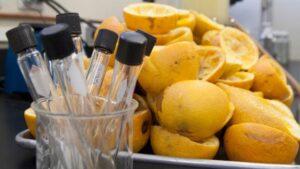 Mexicana crea un bioplástico a partir de cáscaras de naranja
