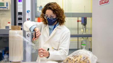 DAFIA transforma residuos en bioplásticos para aditivos ignífugos y envases barrera