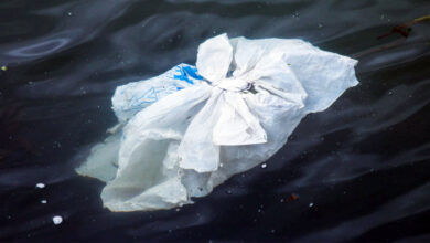 Plásticos hidrosolubles: aliado sostenible contra el COVID-19