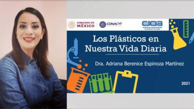 """""""Los plásticos y el medio ambiente"""": el Open house de CIQA para niños"""