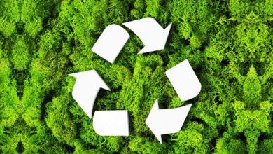 Día Internacional del Reciclaje: circularidad es clave para un futuro sustentable