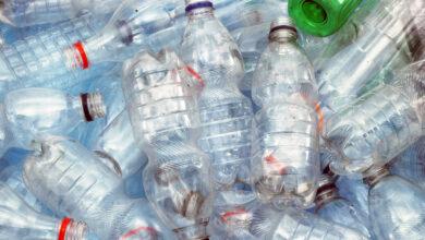 Henkel Beauty Care y Plastic Bank recolectan mil millones de botellas de plástico