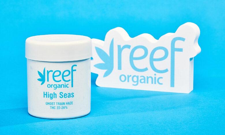 Plástico oceánico 100% recuperado: la evolución del mercado de cannabis medicinal