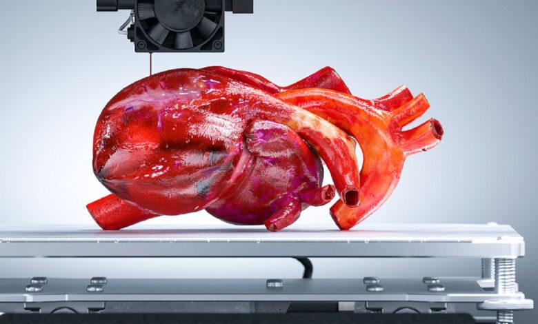 Impresión 3D para órganos humano: el futuro de la medicina