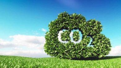Brambles alcanza la neutralidad de carbono en sus operaciones