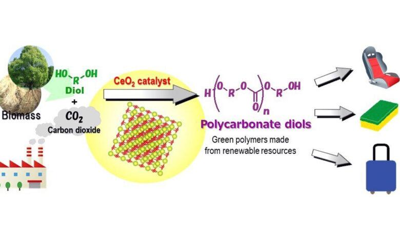 """Crean la primera síntesis """"verde"""" de plástico a partir de CO2 del mundo"""