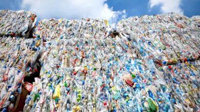 Residuos de la Ciudad de México tienen un valor superior a los 13 mmdp